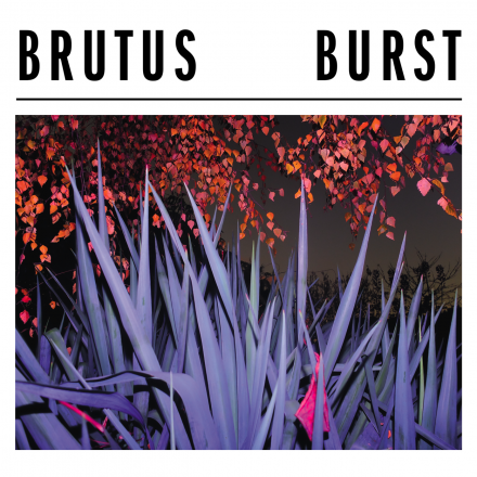 BRUTUS  Share Red Bull Studios session for ALL ALONG and will be at Eurosonic this Friday!